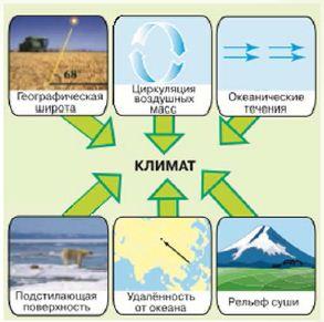 Доклад на тему климат по географии 7397