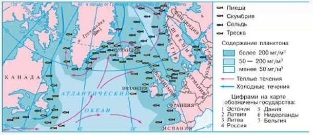 Реферат на тему атлантический океан по географии 2592