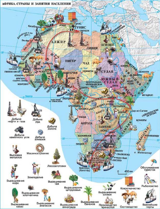 Экспорт и хозяйство Африки География Реферат доклад сообщение  Рис Хозяйство стран Африки