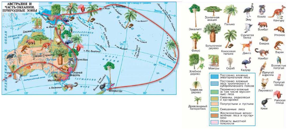 Климат Австралии География Реферат доклад сообщение кратко  Рис Природные зоны Австралии